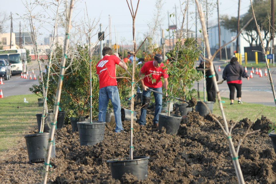 Volunteers plant trees in Houston's East End in 2013. Image via Greater East End Management District.