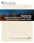 Thumbnail of Disparate City report cover