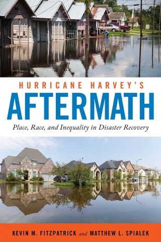 Hurricane Harvey's Aftermath Book Cover