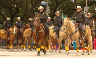 Harris County Sheriff's Office participates in parade