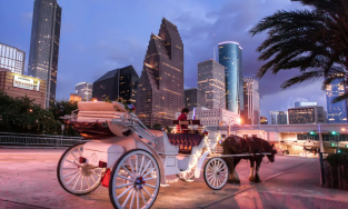 Image of horse drawn carriage in downtown Houston